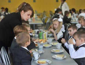 Проект об обеспечении школьников бесплатным питанием одобрил СФ